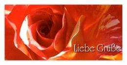 Grußkarte Rose