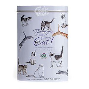 Vanille Fudge in Cats Dose 250 g