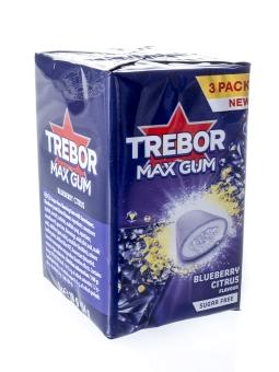 Trebor Max Gum Blueberry Citrus sugar free 54 g